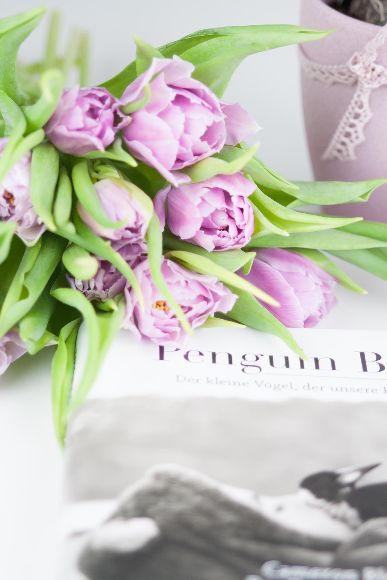 Buchtipp Penguin Bloom