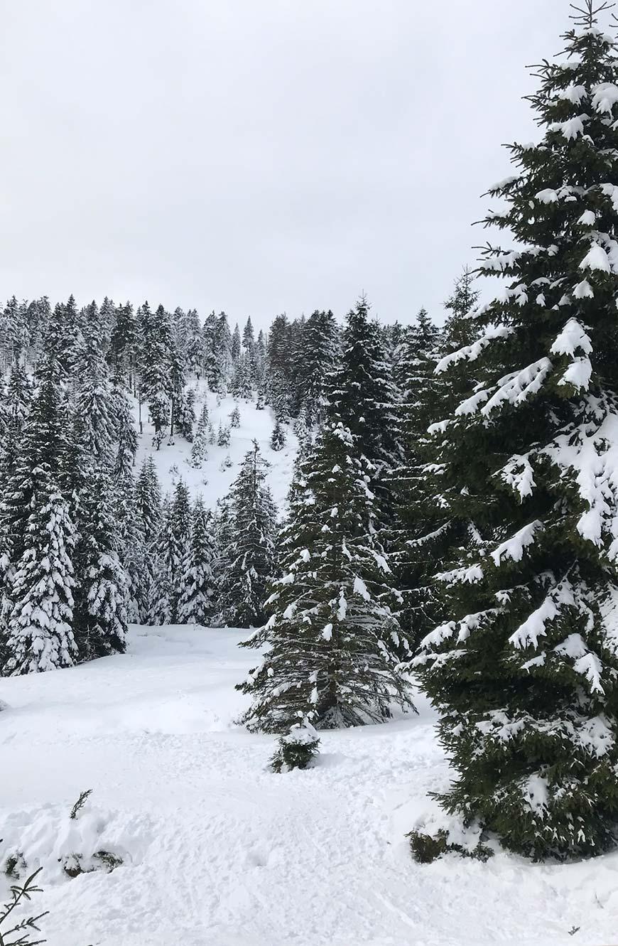 Brocken Harz Winter verschneit