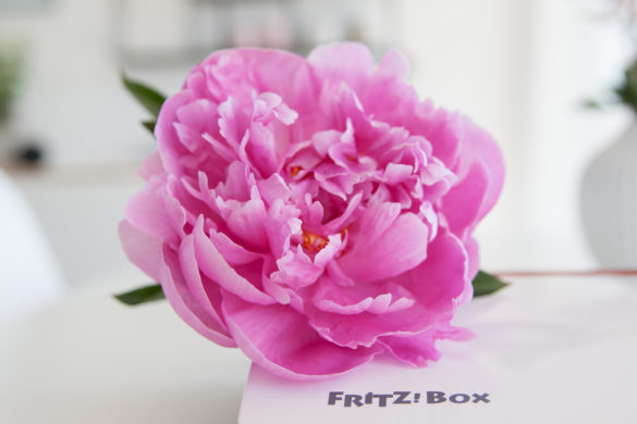 Fritz Box in weiß