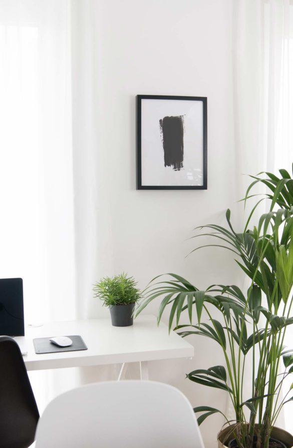 Homeoffice mit Grünpflanzen