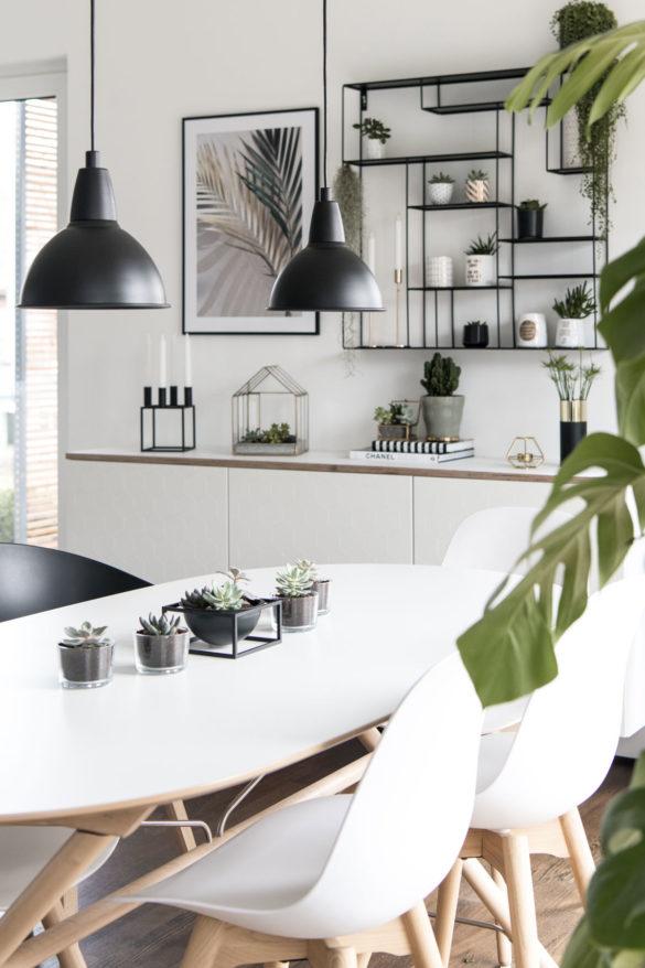 Einrichten mit Zimmerpflanzen
