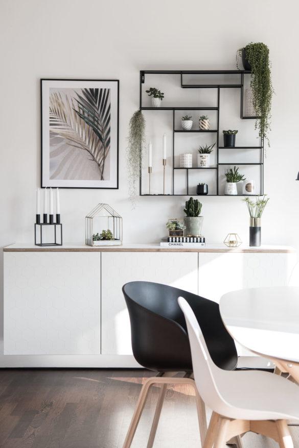 Sukkulenten und Zimmerpflanzen auf Sideboard