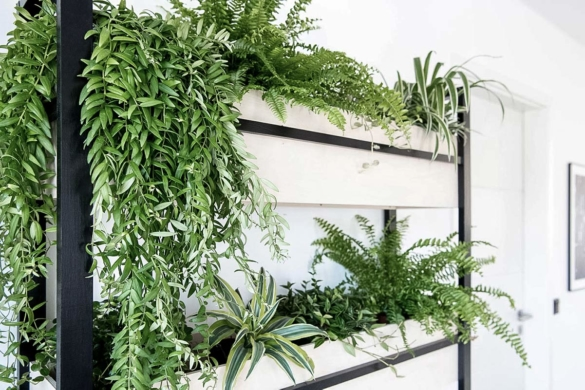 DIY Regal Vertical Garden