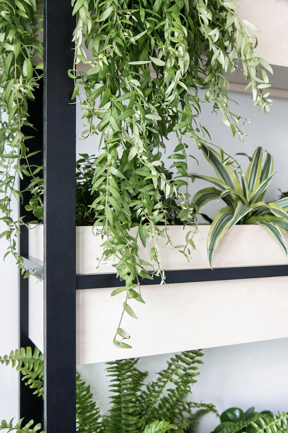 Urban Jungle Vertical Garden Regal