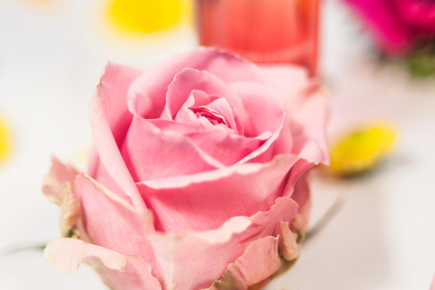Weleda Parfum Rose