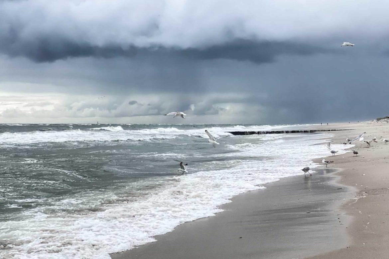Sylt Strand Wind